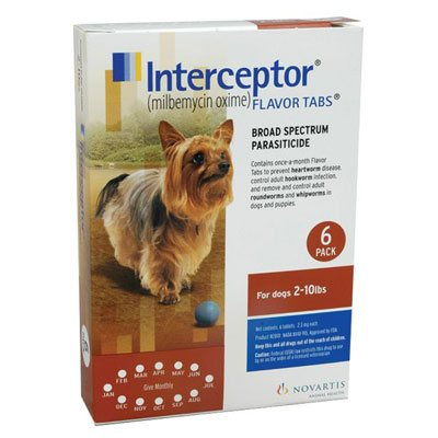 130794364746701202interceptor-for-dogs-2-10-lbs-brown.jpg