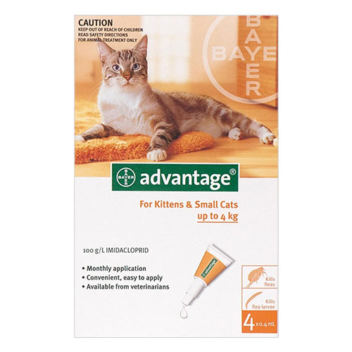 Advantage-Kittens-and-Small-Cats-1-10lbs-for-Cats-Flea-and-Tick-Control.jpg