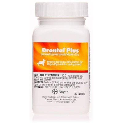 Drontal Plus