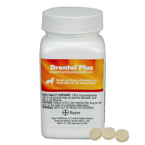 drontal-plus-for-dogs-flavor_03292021_011656.jpg