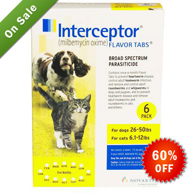 interceptor-for-dogs-26-50-lbs-yellow-cs.jpg
